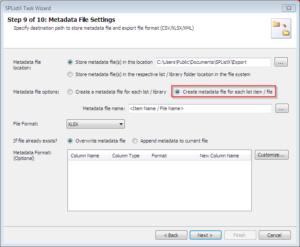 Metadata File Settings